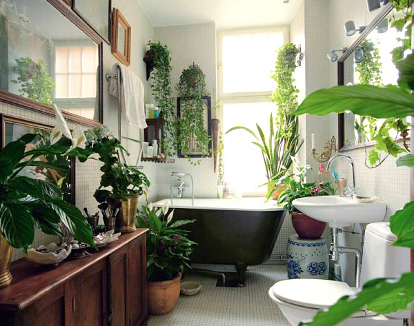 Plant-filled-bathroom