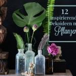 INSPIRATION|Dekorieren mit Pflanzen